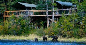 Bear Camp Chilko Lake